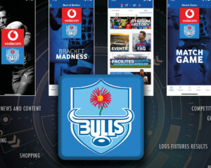 Macrocomm Announces Partnership with Bulls